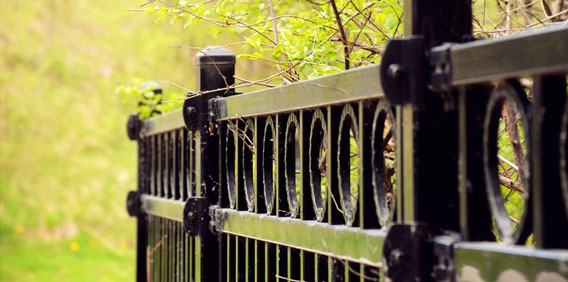 Fences, Walls & Gates